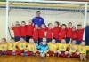 Zemgales jaunatnes telpu futbola čempionāts 2014-2015. 2008.g.dz. (U-7)